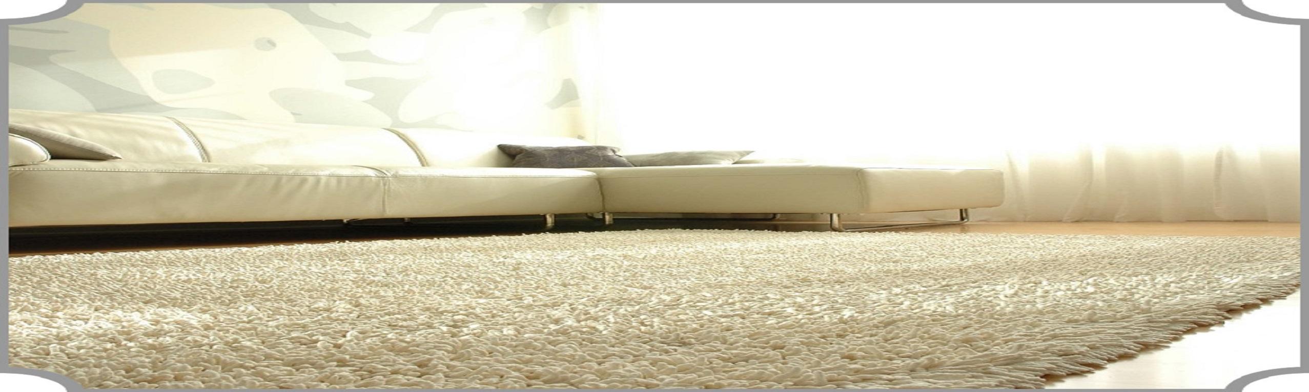 Limpeza, Higienização e Lavagem de Tapetes