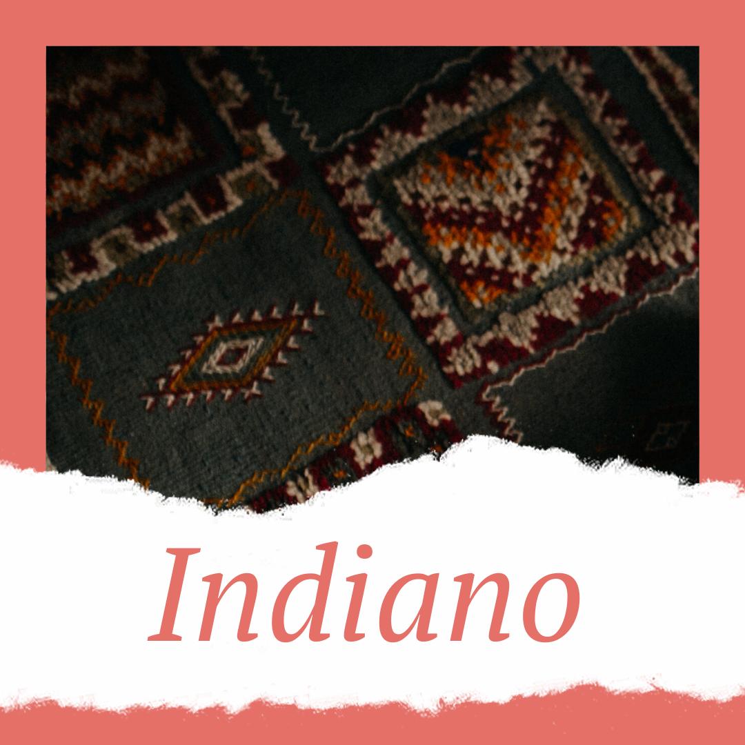 lavagem de tapetes indianos
